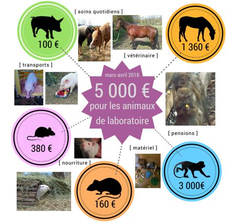 5000 euros pour les animaux de laboratoire