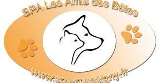 Logo SPA de Messigny