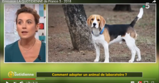 Emission La Quotidienne France 5 - Animaux de Laboratoire